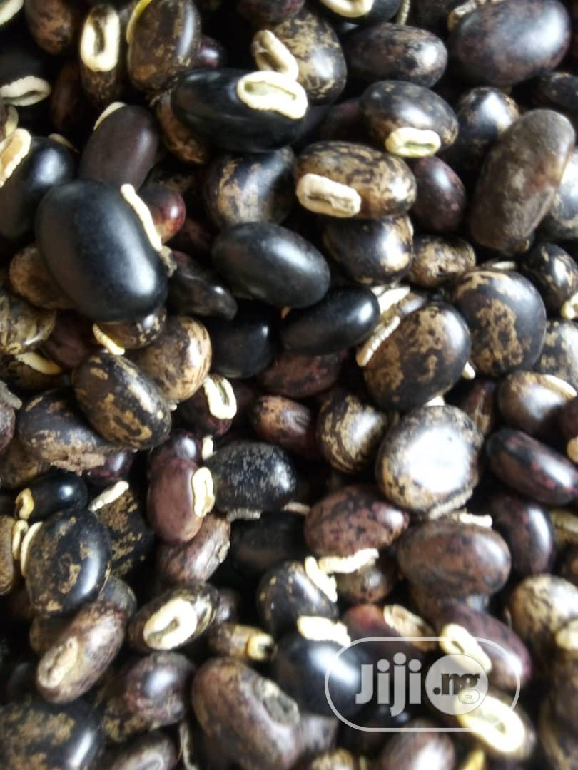 Mucuna Pruriens Seeds   Meals & Drinks for sale in Kubwa, Abuja (FCT) State, Nigeria