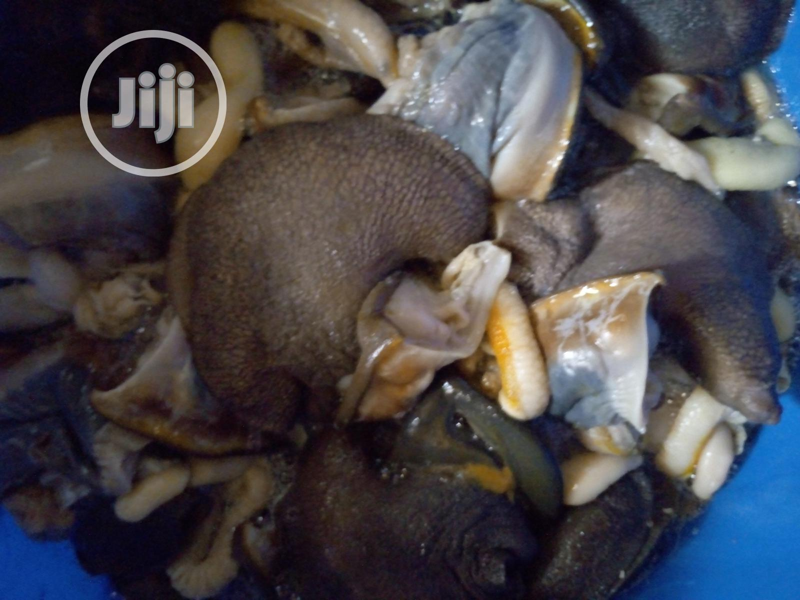 Archive: Snail Meat For Sale