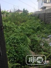 A Full Plot Fenced and Gated Land at Thomas Estate Ajah | Land & Plots For Sale for sale in Lagos State, Ajah