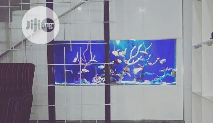 Aquarium Construction