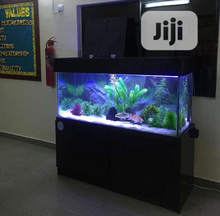 Aquarium Construction   Pet Services for sale in Lekki, Lagos State, Nigeria