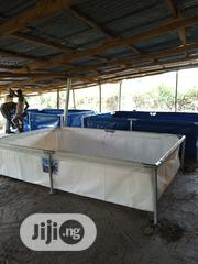 Tapolin Fish Tank 10ft | Farm Machinery & Equipment for sale in Lagos State, Alimosho