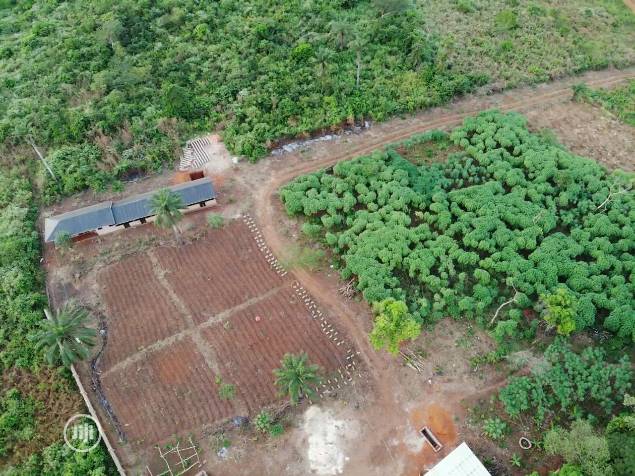 Archive: Farmlands With Water Supply For Rent