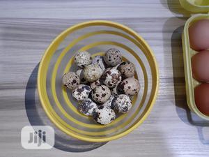 Fresh Organic Quail Eggs At Aguda - Ikeja, Lagos | Meals & Drinks for sale in Lagos State, Ikeja