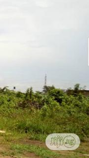 600hectares of Farmland for Sale | Land & Plots For Sale for sale in Oyo State