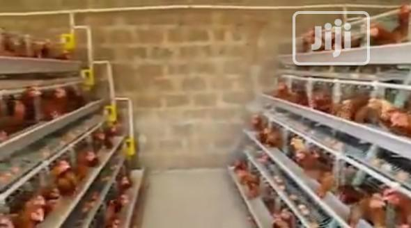 China Factory Imported Battery Poultry Cages Galvanized Chicken Cages   Farm Machinery & Equipment for sale in Lagos Island (Eko), Lagos State, Nigeria