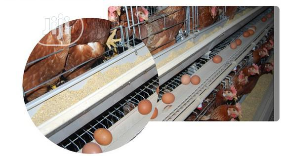 China Factory Best Chicken Cage Poultry Cage | Farm Machinery & Equipment for sale in Ikoyi, Lagos State, Nigeria