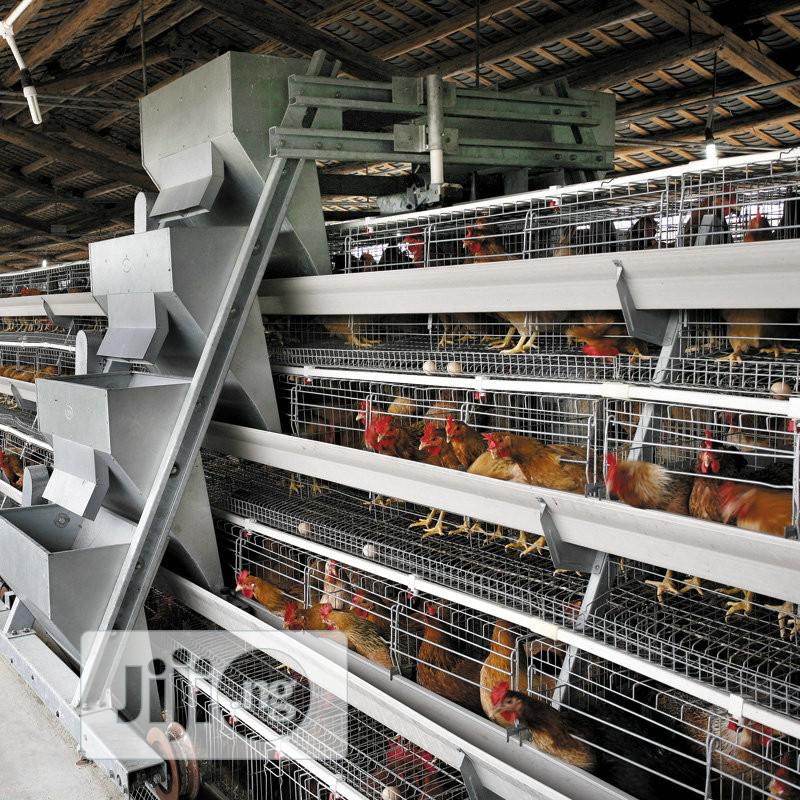 China Factory Best Chicken Cage Poultry Cage