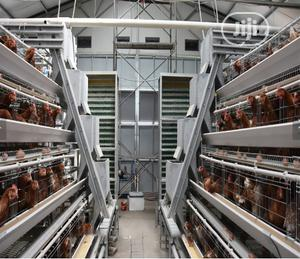 China Factory Hot Galvanized Battery Cage Layer Imported Battery Cage   Farm Machinery & Equipment for sale in Lagos State, Ikeja