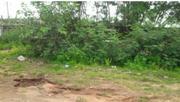 Land For Real Estate | Land & Plots For Sale for sale in Kwara State, Ifelodun-Kwara