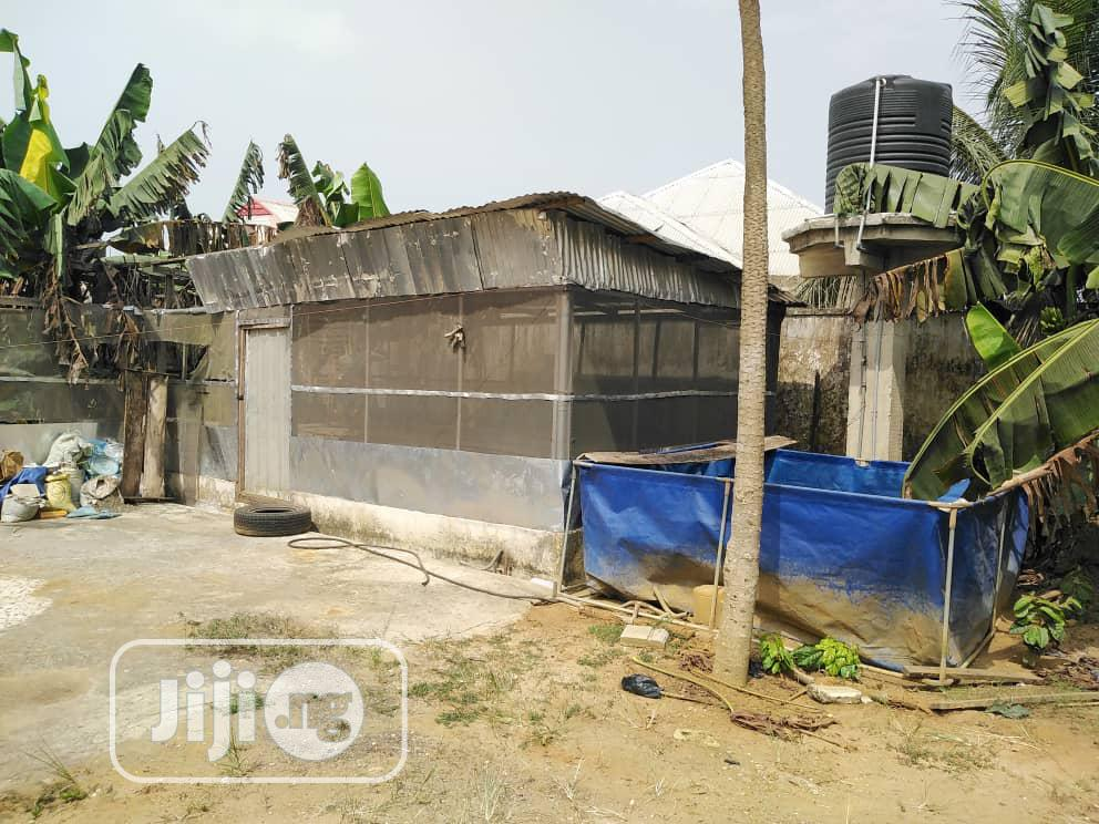 Farm for Sale in Uyo | Commercial Property For Sale for sale in Abak, Akwa Ibom State, Nigeria