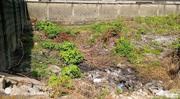 Plots of Land at Millennium Estate Gbagada for Sale | Land & Plots For Sale for sale in Lagos State, Gbagada