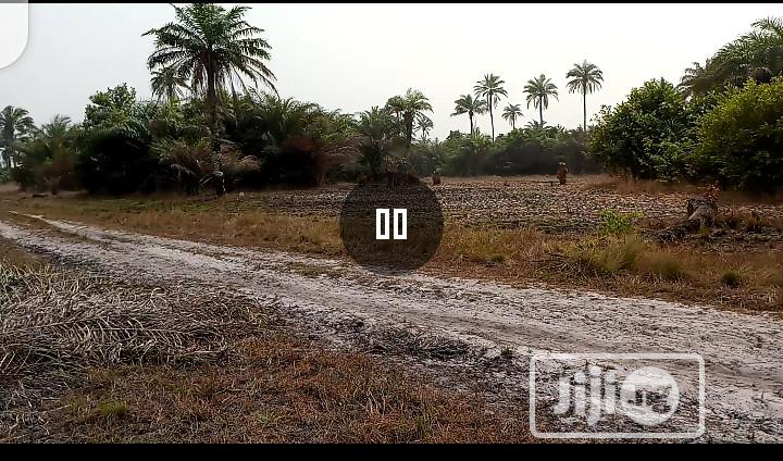 Cheapest Titled Land Closest to Dangote Jetty | Land & Plots For Sale for sale in Ibeju, Lagos State, Nigeria