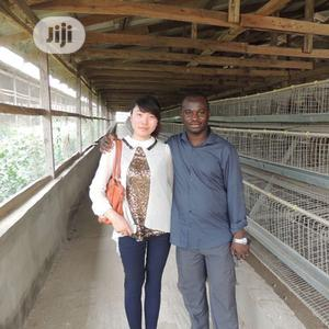 Battery Cage China Factory Poultry Battery Cages   Farm Machinery & Equipment for sale in Ogun State, Ikenne