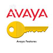 AVAYA License Keys | Computer & IT Services for sale in Lagos State