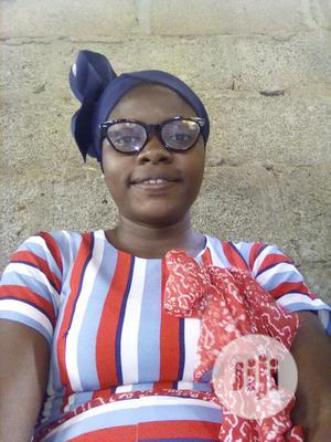 Damilola Cv   Other CVs for sale in Lagos State, Ifako-Ijaiye