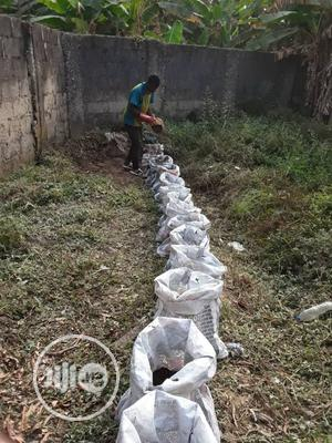 Organic Fertilizers | Feeds, Supplements & Seeds for sale in Abuja (FCT) State, Kuje