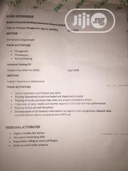Dispatch Logistics Officer | Logistics & Transportation CVs for sale in Lagos State, Alimosho