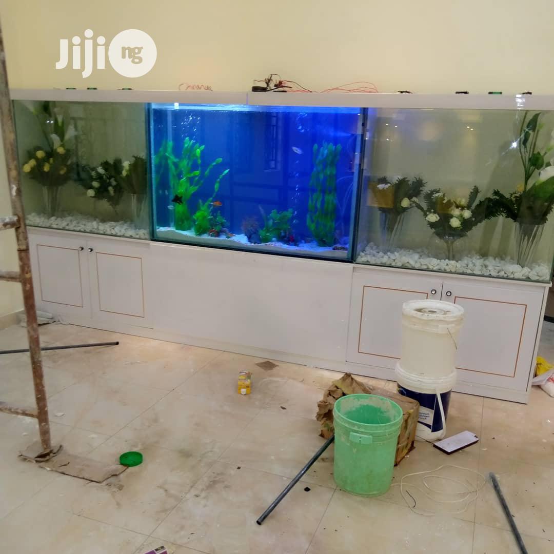 Aquarium And Terrarium