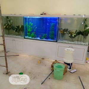 Aquarium And Terrarium | Fish for sale in Abuja (FCT) State, Gwarinpa