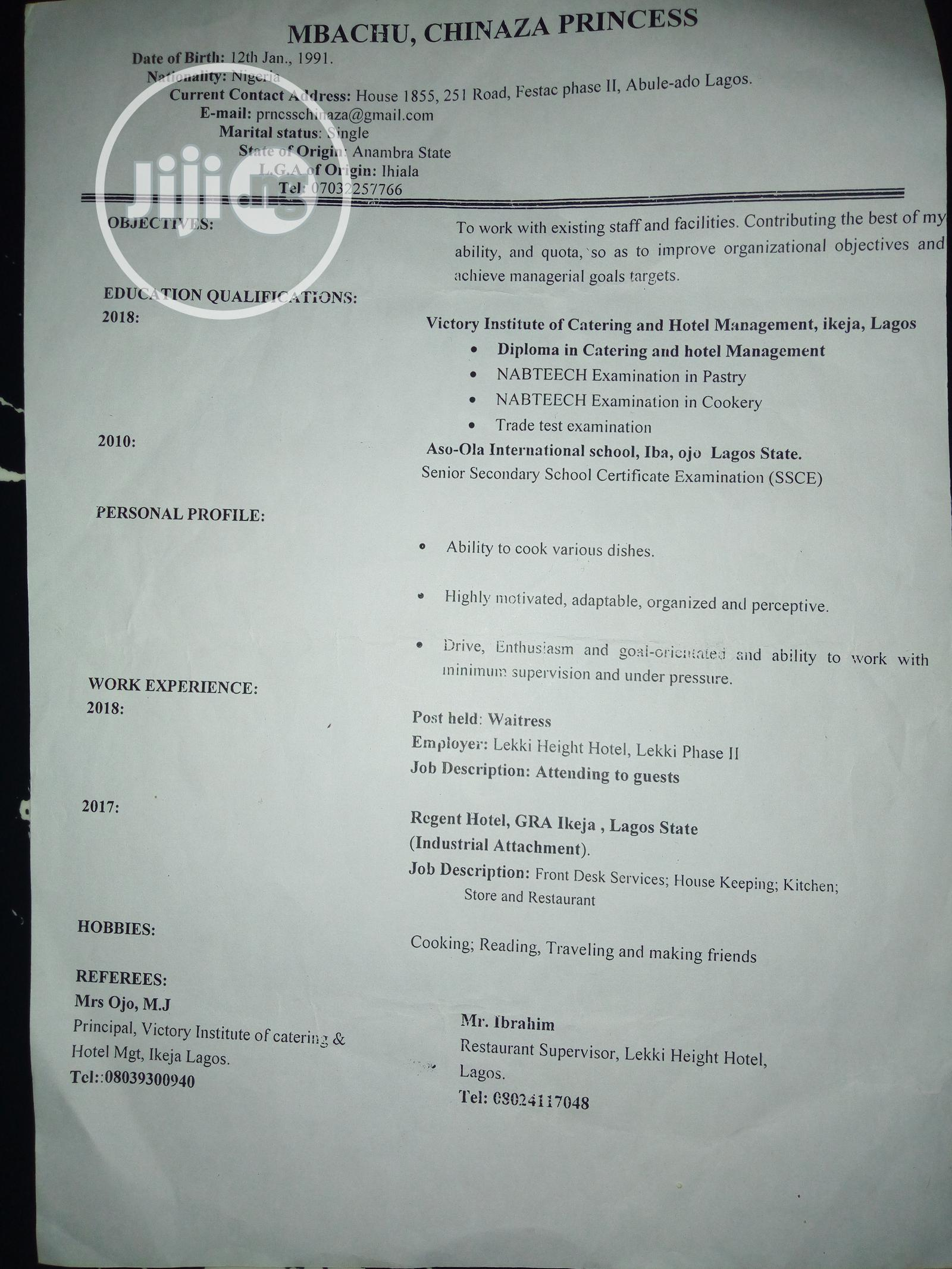 Travel Tourism CV   Travel & Tourism CVs for sale in Anambra East, Anambra State, Nigeria