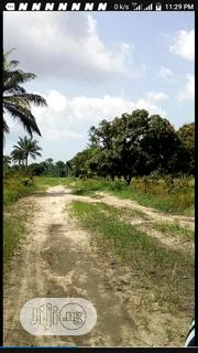 More Than 11,500 Acres for Sale | Land & Plots For Sale for sale in Ogun State, Ipokia