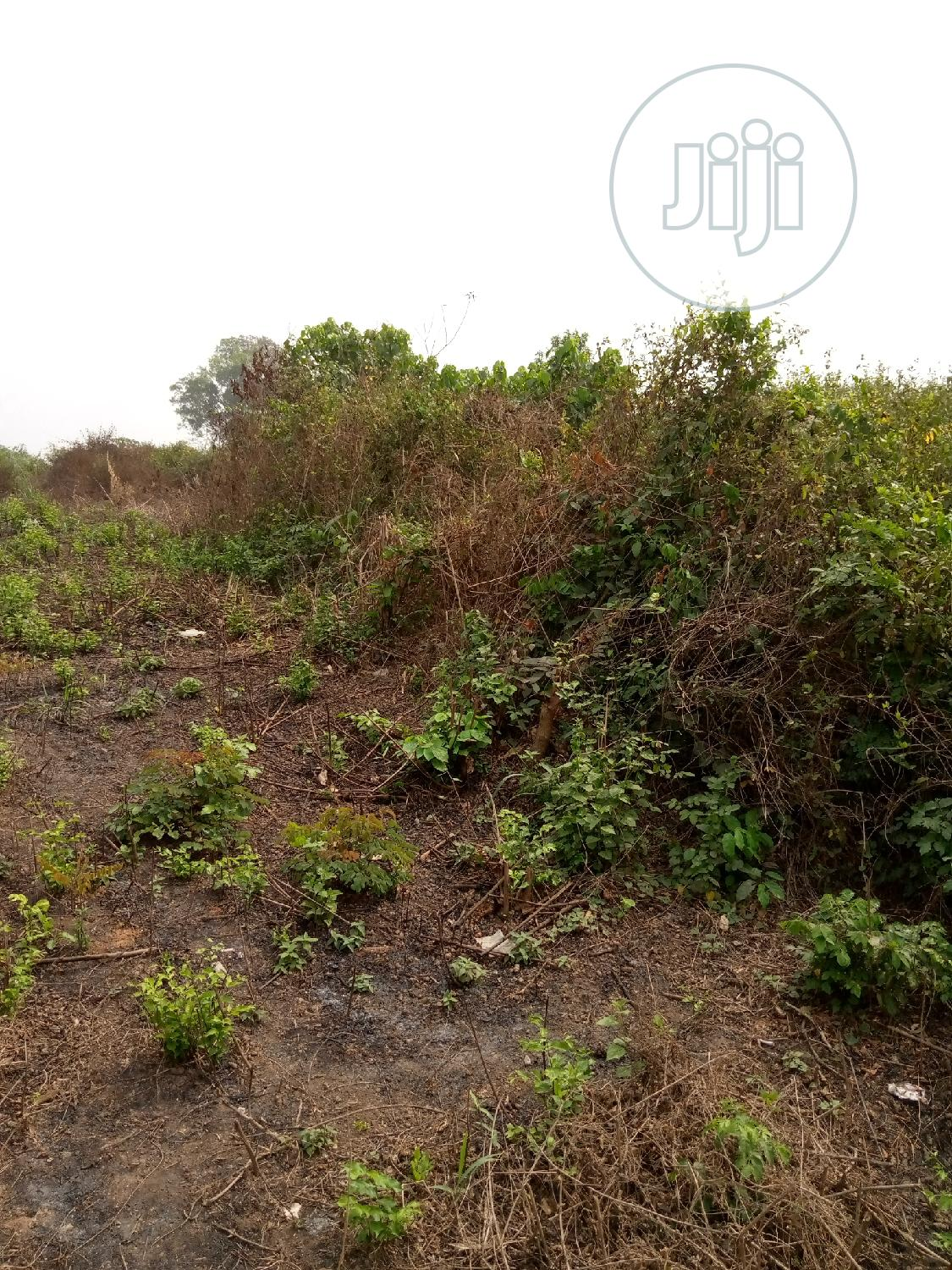 Buy Cheap Acres Of Land At Gbaga | Land & Plots For Sale for sale in Ikorodu, Lagos State, Nigeria