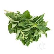 Fresh Oregano Leaf | Feeds, Supplements & Seeds for sale in Lagos State, Victoria Island