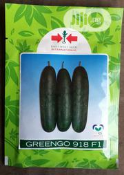 Greengo F1 Cucumber Seed (500 Seed Pack) | Feeds, Supplements & Seeds for sale in Delta State, Uvwie
