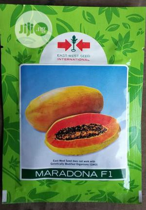 Maradona F1 Semi Dwarf Hybrid Pawpaw Seed | Feeds, Supplements & Seeds for sale in Delta State, Uvwie