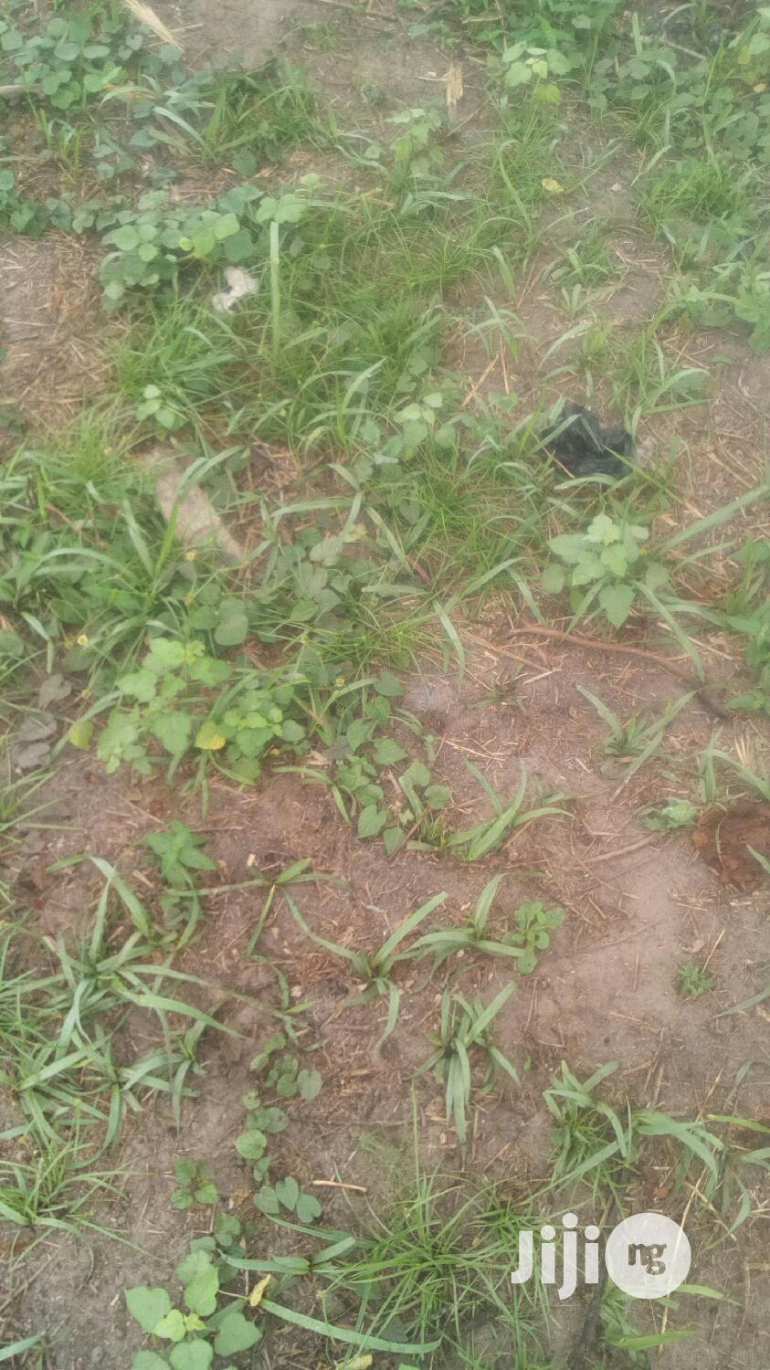 Buy Dry Land At Muwo Badagry Plot Of Land For Sale 600sqm