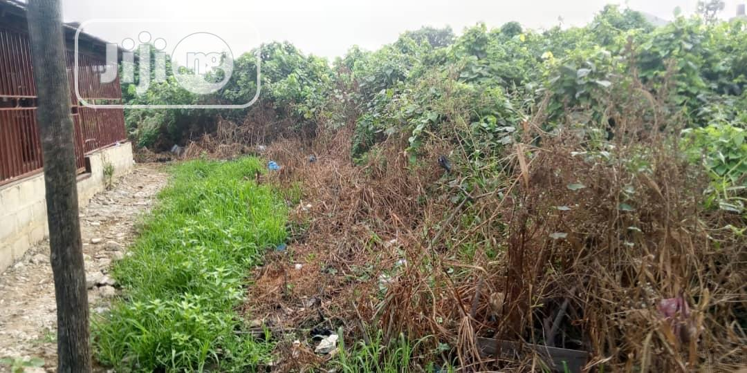 Archive: 3 Plots of Dry Land at Ifako-Gbagada For Sale.