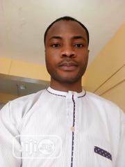 Offline Field Sales Agent | Sales & Telemarketing CVs for sale in Lagos State, Lagos Island