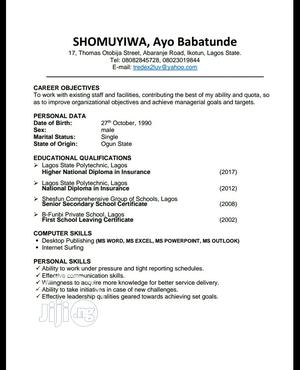 Sales Agent   Sales & Telemarketing CVs for sale in Lagos State, Alimosho