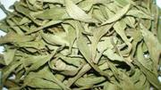 Stevia Leaf Organic Stevia Leaf | Feeds, Supplements & Seeds for sale in Lagos State, Victoria Island