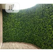 Well Designed Fence | Garden for sale in Imo State, Ahiazu-Mbaise