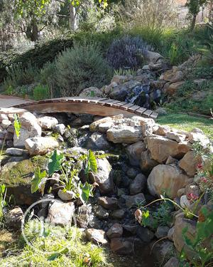 Japanese Koi Ponds | Building & Trades Services for sale in Lagos State, Victoria Island