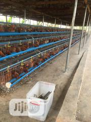 Modern Chicken Cage For Layers   Farm Machinery & Equipment for sale in Lagos State, Oshodi-Isolo
