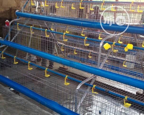 Dekoraj Super Battery Cage For Birds 2020