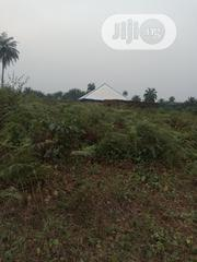 Full Plot of Land   Land & Plots For Sale for sale in Cross River State, Akpabuyo