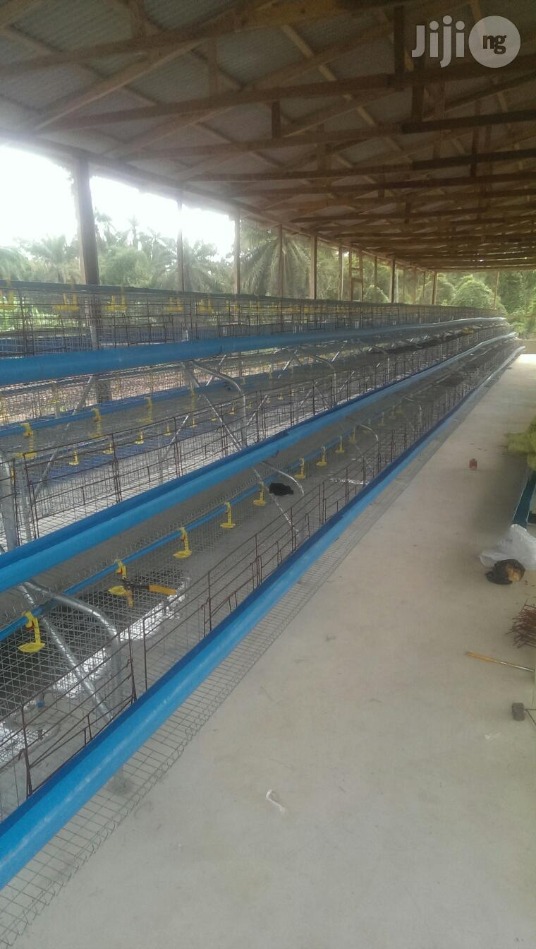 Christmas Special Offer Poultry Farmer's Battery Cage