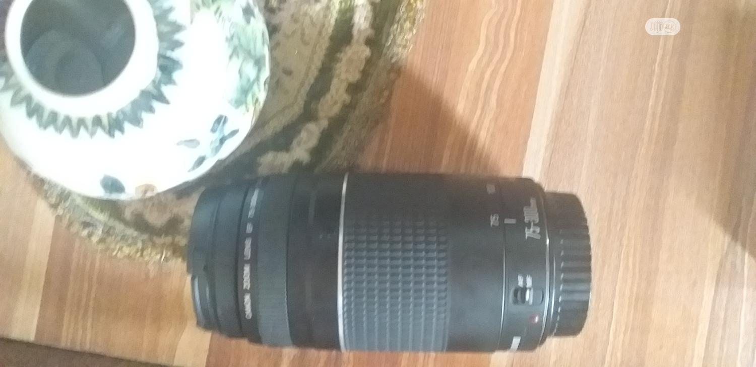 Canon 75-300mm Lens