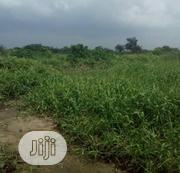 Affordable 3 Acres of Land, for Sale at Gbagada Express Way, Lagos | Land & Plots For Sale for sale in Lagos State, Gbagada