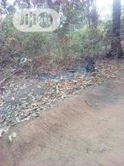 Two Plot Of Land For Sale | Land & Plots For Sale for sale in Anambra State, Nnewi