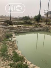 Catfish Ponds/Farm For Rent   Land & Plots for Rent for sale in Abuja (FCT) State, Kubwa