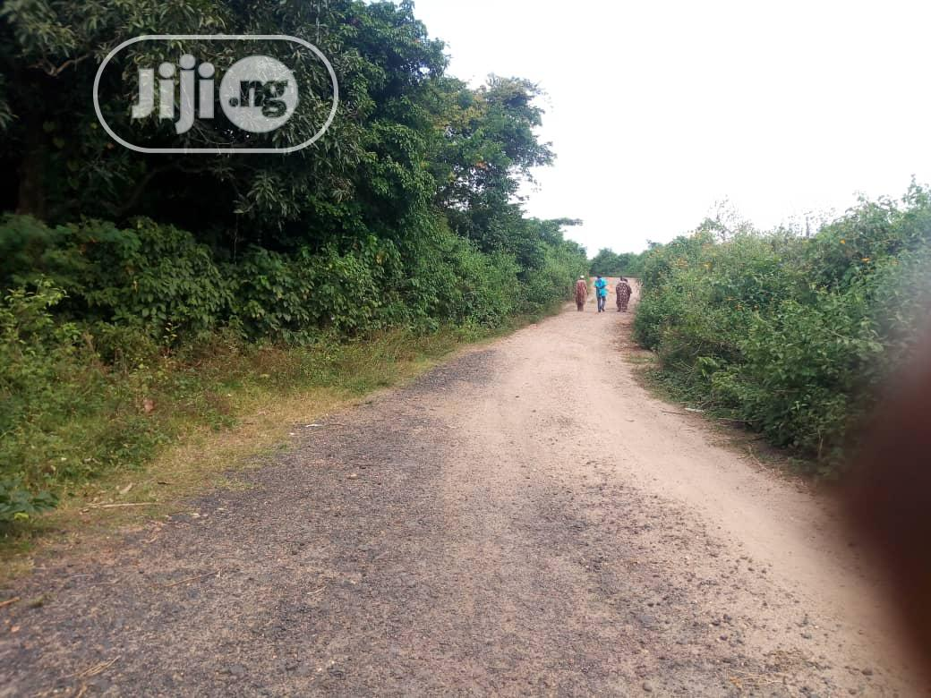 Different Plot Acres Of Land In Ido Local Gvt
