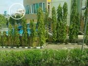 Hotel For Sale | Houses & Apartments For Sale for sale in Lagos State, Ajah