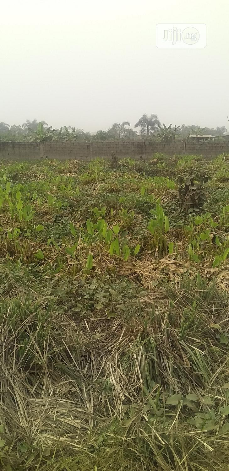Plots Of Land For At Promise Land Estate,Isheri Oshun | Land & Plots For Sale for sale in Alimosho, Lagos State, Nigeria