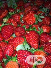 Wholesale Fresh Strawberry Bulk Fresh Strawberries PLUS FREE 1KG   Meals & Drinks for sale in Plateau State, Jos