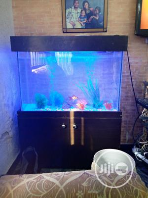 Aquarium And Pools | Building & Trades Services for sale in Abuja (FCT) State, Lugbe District